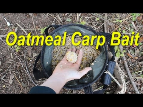 Best Pack Bait For Carp: Oatmeal. Catching Carp With Oatmeal Pack Baits