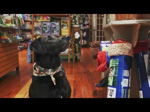 Behind the Coast: Beaufort Pet Provisions