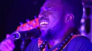 K.O.G. & The Zongo Brigade - Jabulani (Live at Glastonbury ETC 2015)