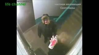Подъезд россиянина. В мире животных. Беспредел в подъезде Часть 2 Онлайн Видео