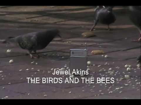 JEWEL AKINS:  THE BIRDS AND THE BEES 1965