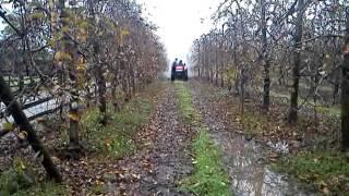 Tractor YTO 404 Frutero