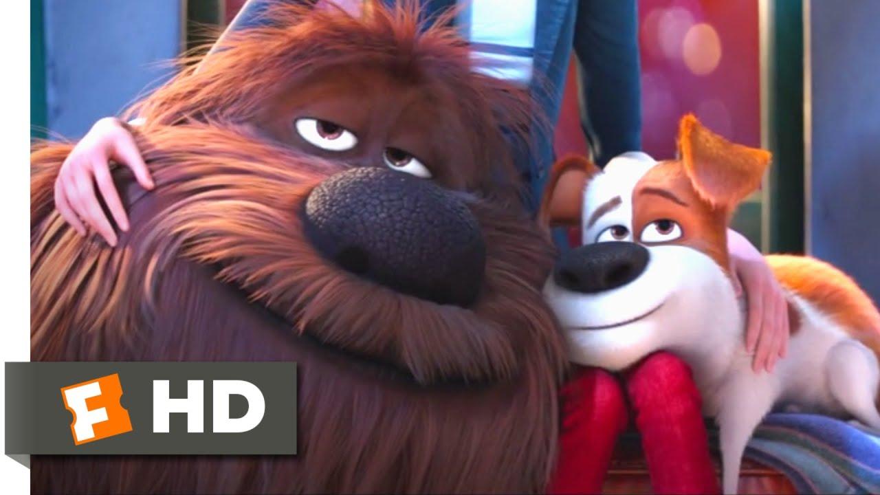 Download The Secret Life of Pets - Coming Home Scene   Fandango Family