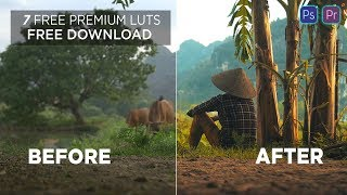 7 Free Premium Cinematic Luts | How to Apply Luts in Adobe Premiere Pro | Free Download