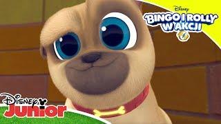 Tylko nie mrugnij! 👀 | Bingo i Rolly w akcji! | Disney Junior Polska