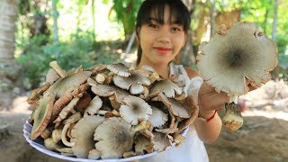 Yummy cooking chicken soup with mushroom recipe - Cooking skill