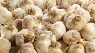 Garlic ya Lehsan ki kasht  Dr. Ashraf Sahibzada
