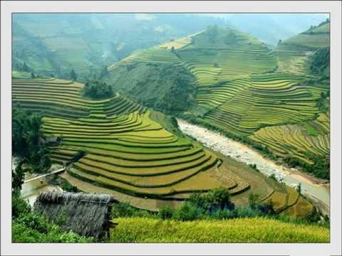 romantic scenic vietnam landscape