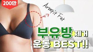 겨드랑이 살 빼기 부유방없애기운동 ㅣ JJ다이어트 인벤…
