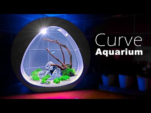 Stylish 3.5 Gallon - Nano Curve Aquarium Setup