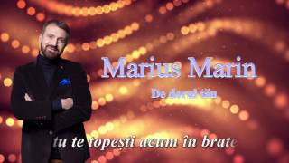 Marius Marin-De dorul tau (lyrics video)