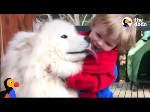 Thumbnail: Dog Teaches His Little Boy About The World | The Dodo