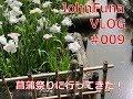 【VLOG 009】菖蒲の花に誘われ(戸畑区 菖蒲祭り) の動画、YouTube動画。