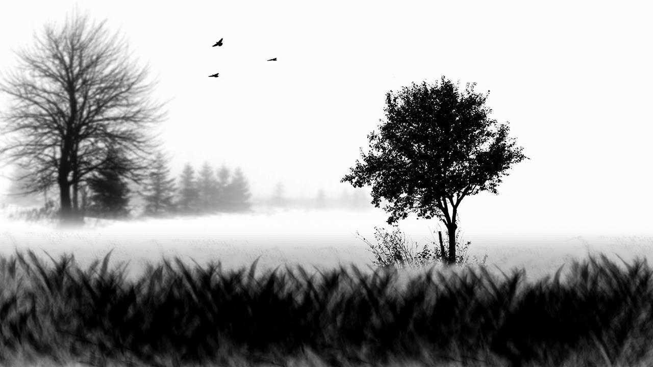 black and white fine art scene