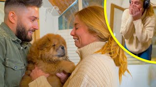 MOST EMOTIONAL PUPPY SURPRISE IN INTERNET HISTORY! (Girlfriend)