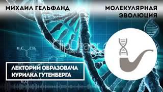 видео: Михаил Гельфанд — Молекулярная эволюция