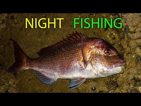 Night Fishing From The Rocks For Snapper, Kahawai & Trevally - Tips & Info