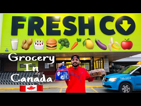 Grocery Expenses In Canada