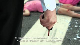 APSI Campanha Atropelamentos 2015   Legendado