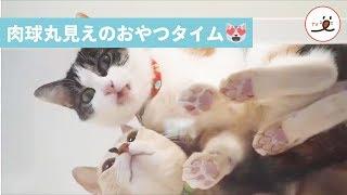via Instagram @mochi_ryoko https://www.instagram.com/mochi_ryoko/ ...