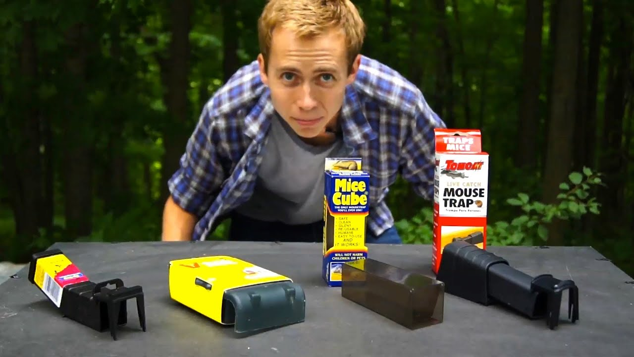 NEW! - What's The Best Live Mouse Trap For Your Home or Apartment?