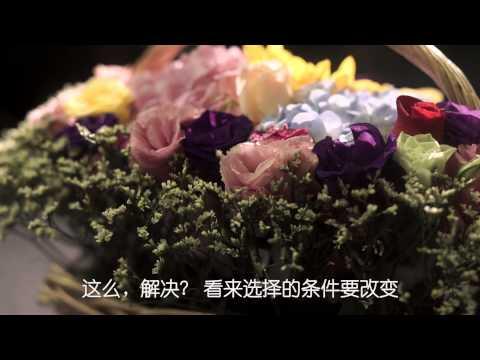 taeyang dating