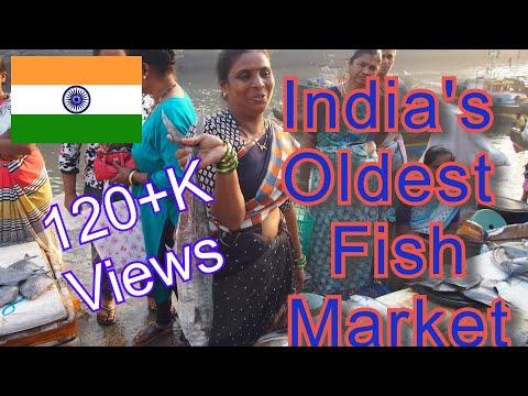 Sassoon Dock - India's Oldest Live Fish Market - Pride Of Mumbai (journey Dark To Sunrise)
