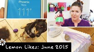Diy Ac Cooler & Dog Toy Haul | Lemon Likes ❋ June 2015