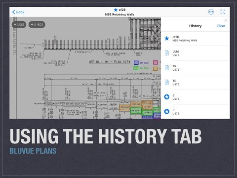 How to Use the History Tab