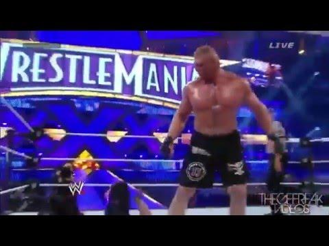 Undertaker vs Brock Lesnar Wrestlemania 30 Highlights