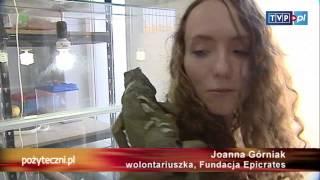 Pożyteczni.pl - Węże, skorpiony, jaszczurki...