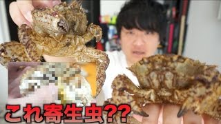 生きたクリガニを蟹味噌エグったら寄生虫みたいなのいたww