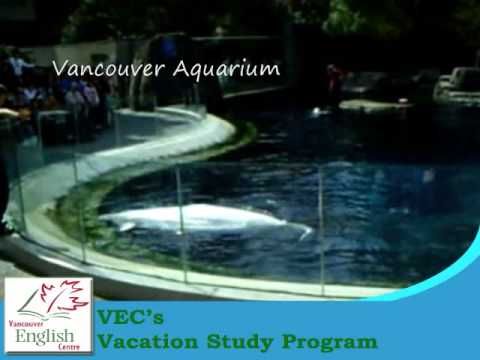 VEC's Vacation Study Program 2009