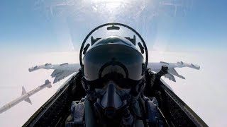 Australian Hornet Montage 2017 HD