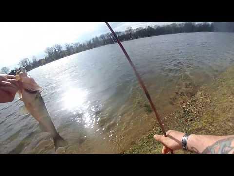Olander Park Bass On Swim Bait With Make Shift Under Spin