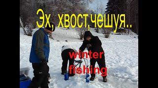 Эх, хвост,чешуя...Первая зимняя рыбалка.США.  Аляска . Анкоридж.