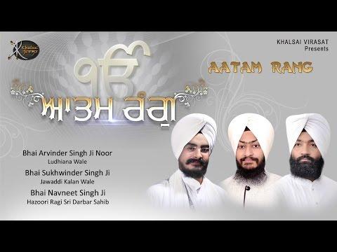 Bin Bhagha |  Bhai Navneet Singh Ji | Shabd Gurbani | Kirtan | HD