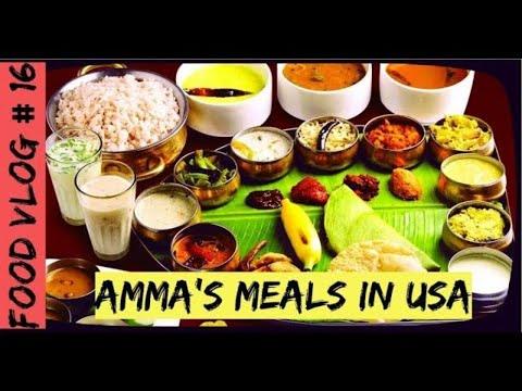 Food Vlog 16 Amma S South Indian Cuisine Voorhees Nj