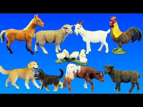 Country Barn Farm Animals with Schleich Animal Toys Collection For Kids