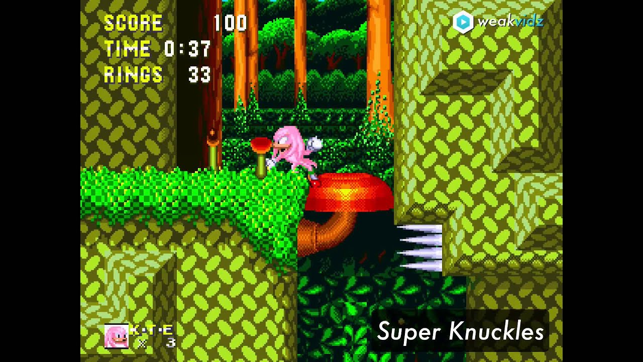 Sonic 3 & Knuckles...