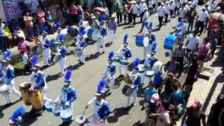 Desfile 2015 ( C.E. Anita Guerrero )