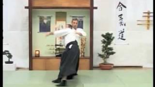 Bosnia 2009 - Iwama Ryu Aikido - Daniel Toutain