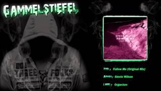 Stevie Wilson - Follow Me (Original Mix)