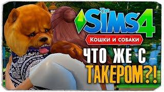 """ЧТО СЛУЧИЛОСЬ С ТАКЕРОМ?! - The Sims 4 """"Кошки и Собаки"""" ▮"""