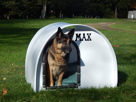DIY doghouse for $35