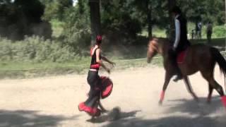 Испанский танец на лошади Малогуена
