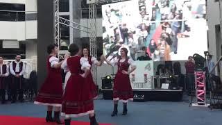 Dans Machedonesc by Oana Events