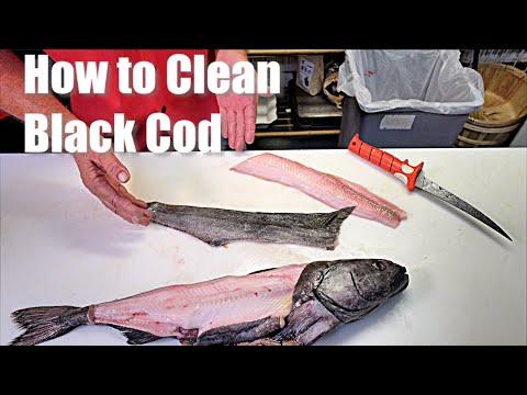 How To Clean Prepare Black Cod SableFish