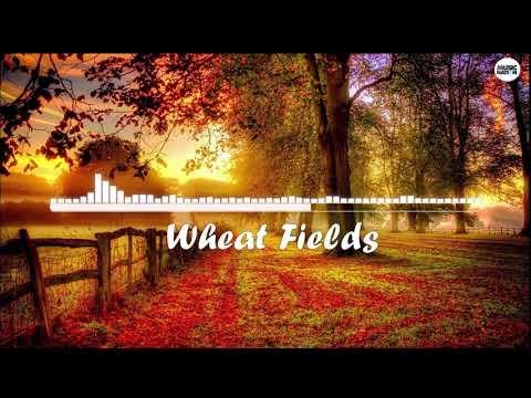 Alan Walker - Wheat Fields (New Song 2017)