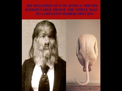RH NEGATIVE...OUT OF AFRICA THEORY...INDISPUTABLE PROOF THE WHITE MAN IS A CREATED HYBRID SPECIES